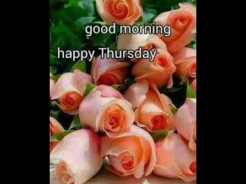 Good Morning Thursday Images, Best Good Morning Images, Beautiful, Flowers Images .