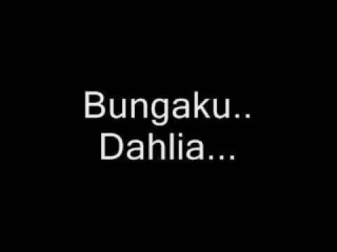 Fildan D4 - Bunga Dahlia (lirik + Sound Max)