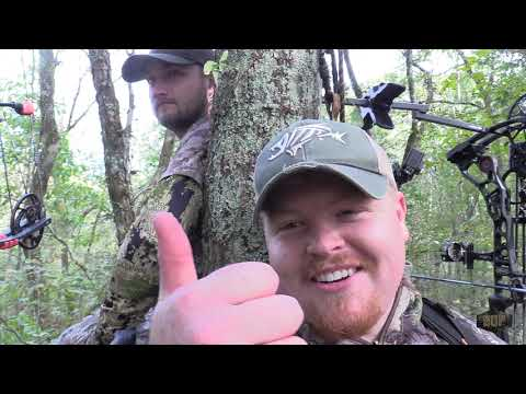 EP. 5- Tennessee Public Land Success! October Bowhunting Whitetails