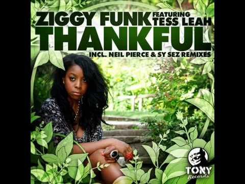 ZIGGY FUNK ft TESS LEAH thankful Main Mix