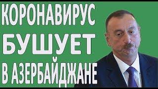 Новости Азербайджана: КОРОНОВИРУС В ДЕЛЕ В БАКУ