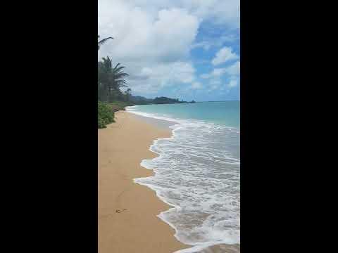 The beach at Pats at Punaluu, Oahu, June 2017