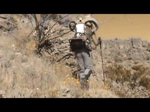 NEW MEXICO BARBARY/AOUDAD HUNT  Solo Public Land DIY 2014
