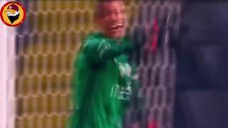 İnandık Biz Sizlere Cimbom Yüzümüzü Güldür (FERNANDO MUSLERA) Video