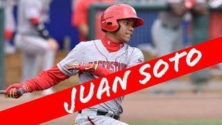 Juan Soto Highlights (FXBA Prospect Series)