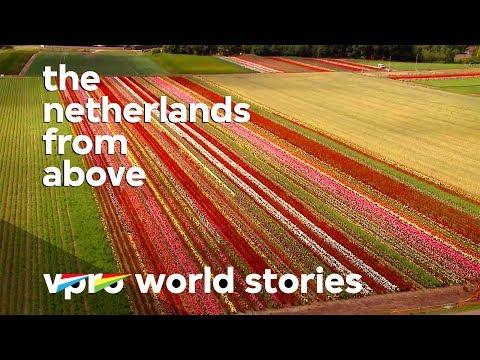 Tulips growth and Dutch prosperity - The Netherlands from above