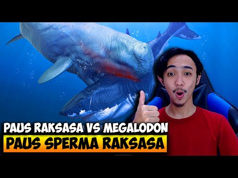 PAUS SPERMA RAKSASA VS MEGALODON ! - FEED AND GROW FISH INDONESIA #17