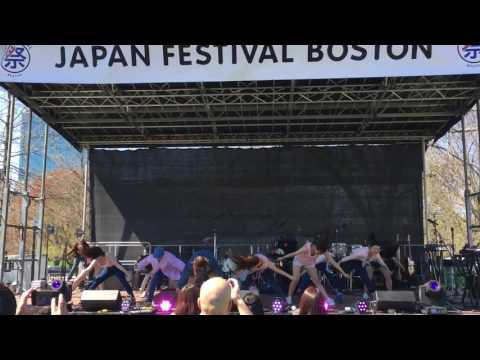 Boston Japan Festival 2016 Showa university