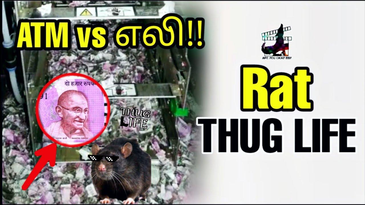 ATM vs எலி !! Rat - THUG LIFE | David and Heather | Sachin Tendulkar | Tamil | are you okay baby