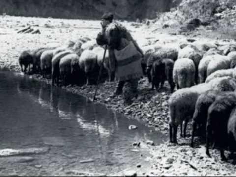 Doina ciobanului / Shepherd's song