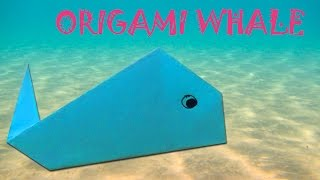 Origami for Kids - Origami Whale (Very Easy)
