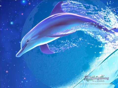 a delfinlátásról)