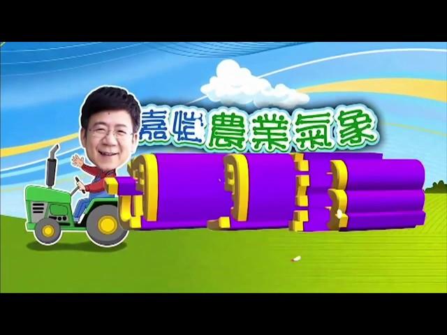 2020.07.13─嘉愷農業氣象週週報