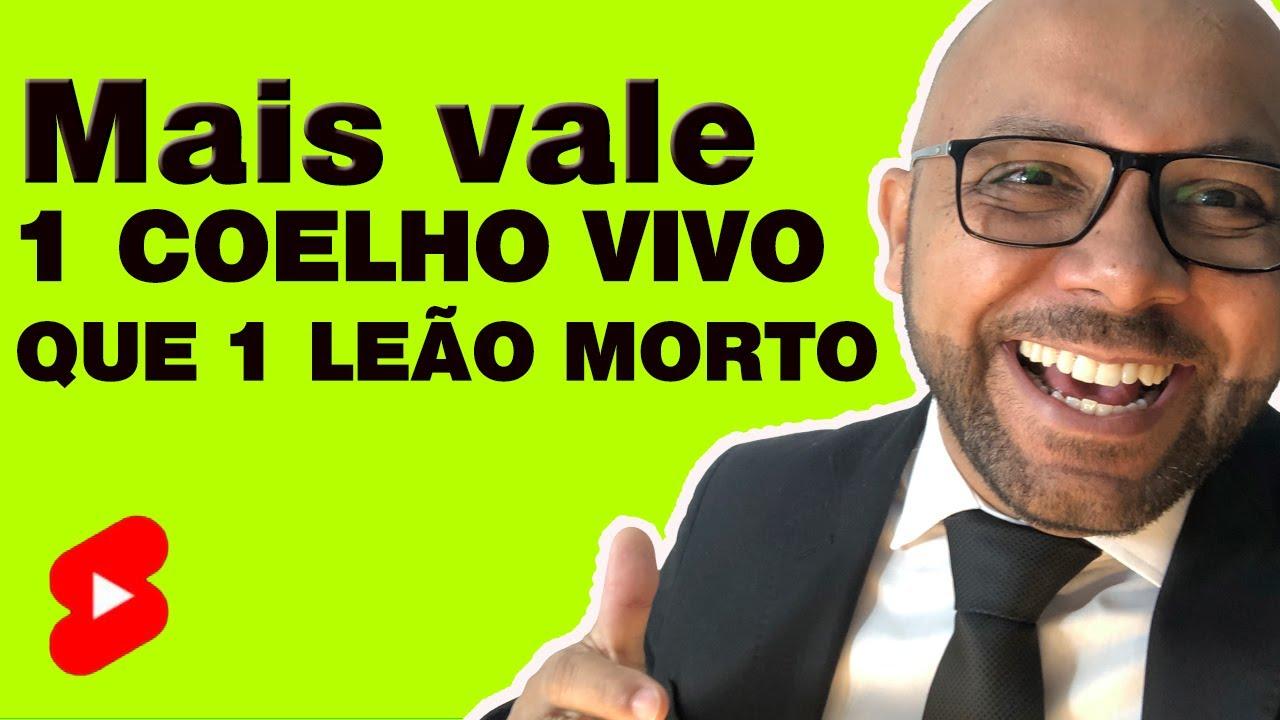 Mais vale um Coelho vivo, que um Leão morto #shorts