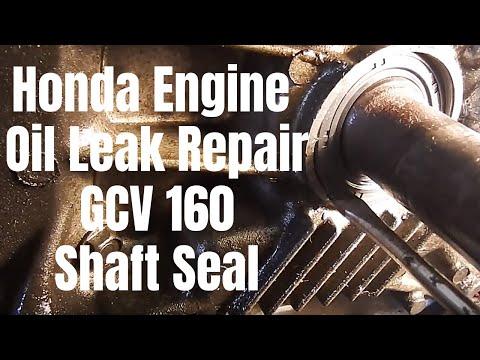 Honda Engine Oil Leak Repair: [GCV 160 Shaft Seal Replacement] (2019)