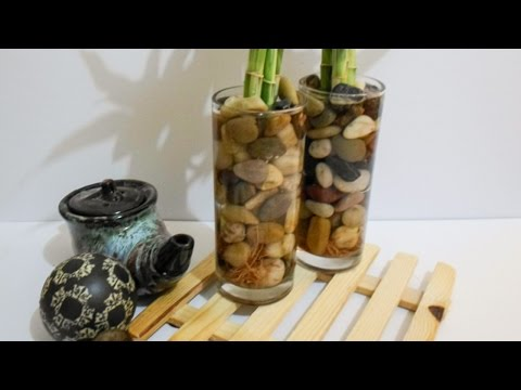 Бамбук в стакане.  - DIY Дом - Guidecentral