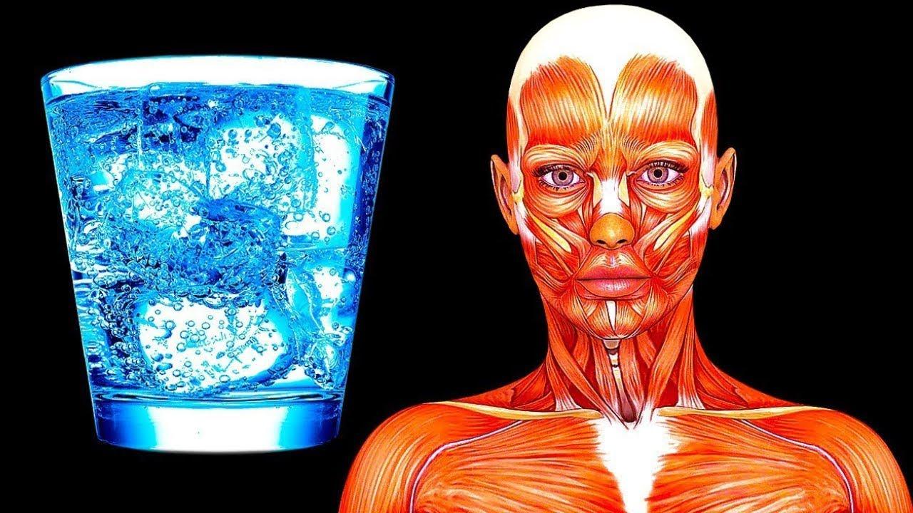 ماذا سيحدث اذا شربت ماء فقط لمده 20 يوم ؟ يتغير جسمك