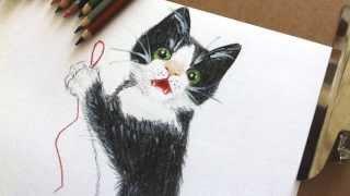 Как нарисовать котенка карандашами (мастер-класс)