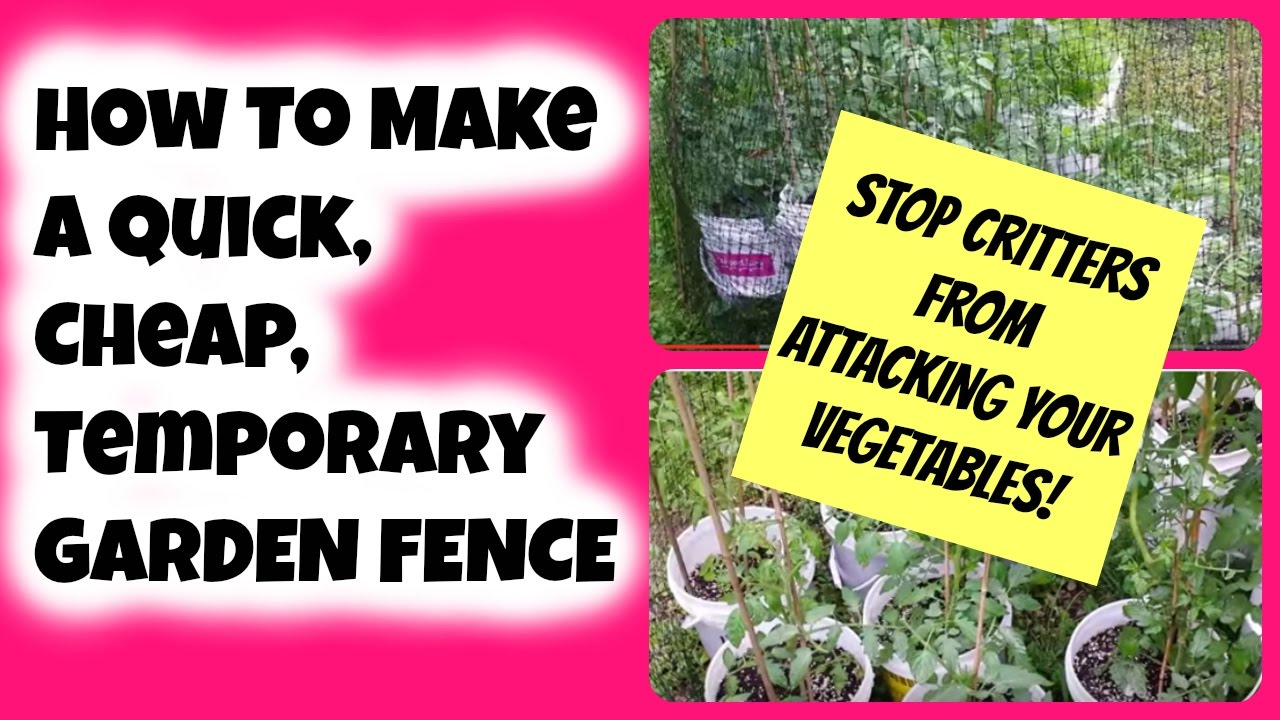 How To Make A Quick Cheap Temporary Garden Fence To Stop