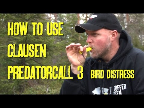 How to use Clausen Predatorcall 3 bird distress call, by Kristoffer Clausen