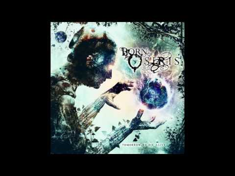 Born of Osiris - Source Field (Instrumental Cover)