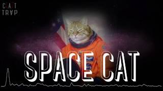 CAT TRVP - SPACE CAT *FIXED AUDIO*