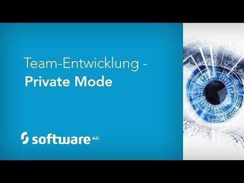 Team-Entwicklung - Private Mode