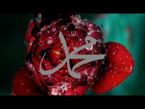 Mucizat-ı Ahmediye'den (asm.) ''Bu parça altın ve elmas ile yazılsa liyakati var.''