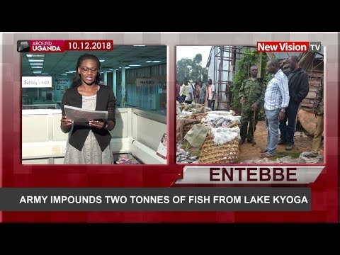 Army Impounds Two Tonnes Of Fish From Lake Kyoga
