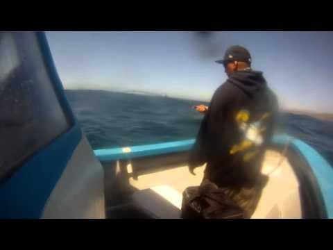 Castros Fishing Trip Erendira,Baja Mexico