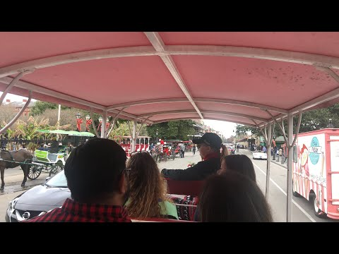 Christmas Day Carriage Ride French Quarter  New Orleans