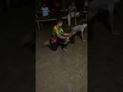 Pencak silat linggo Sari baganti (Padang XI Punggasan)pesisir selatan