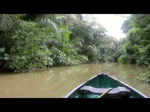 Nicaragua Jungle Expedition (HD Trailer)