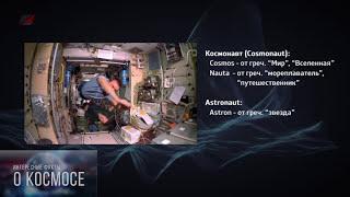 видео 13 интересных фактов о космонавтах