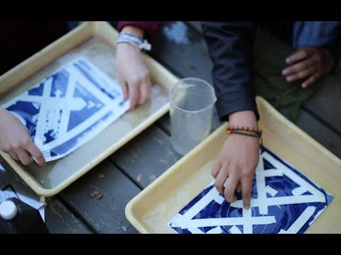 Bowdoin Art Society Offers Workshop on World Cyanotype Day