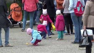 В Ставрополе возникла большая очередь из желающих записаться в детсад