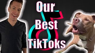 OUR MOST RECENT VIRAL TIKTOKS | Robby and Penny