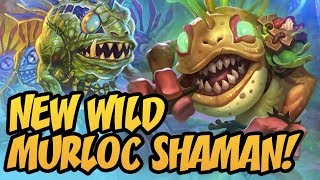 New Wild Murloc Shaman! | Rise Of Shadows | Hearthstone