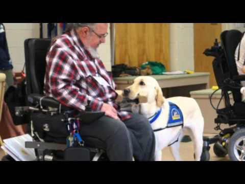 Bay Shore Man Graduates With CCI Assistance Dog