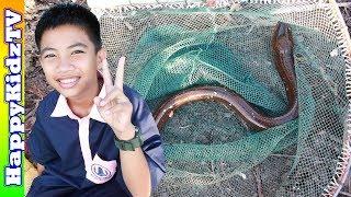 ปลาไหลยักษ์-พี่แชมป์น้องปาน-happykidztv