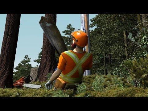 Faller Killed by Slab from Danger Tree