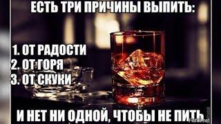 Как вести себя кругом пьют а ты не хочешь себя травить