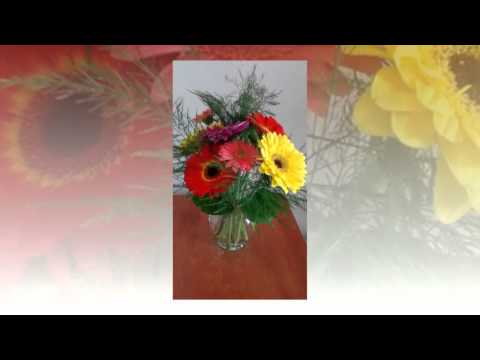 Flower Shop in Aurora Colorado  (303) 693-8663 | Flowers in Centennial CO