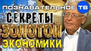 Секреты золотой экономики (Познавательное ТВ, Валентин Катасонов)
