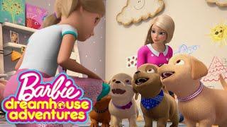 Putts For Pups   Barbie Dreamhouse Adventures   Barbie
