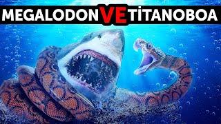 Megalodon Gelmiş Geçmiş En Büyük Yılanla Karşılaşırsa Ne Olur