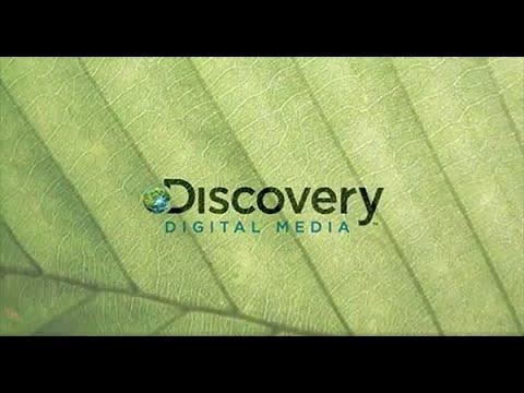 Discovery Digital Media 2009