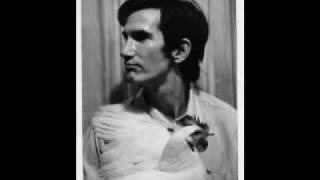 Watch Townes Van Zandt Talking Thunderbird Blues video