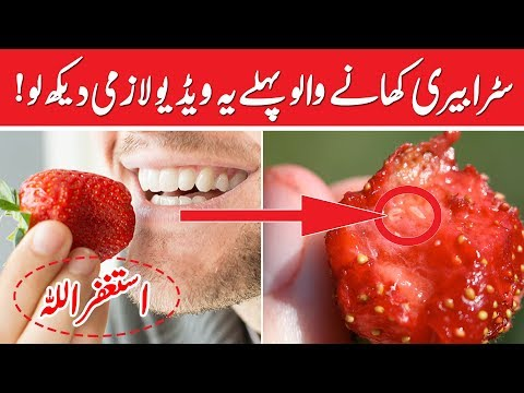 Strawberry Is Not Good For You | Its Side Effect On Health | Must Watch | Suma Health & Beauty