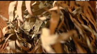 видео Польза бани и сауны для женского здоровья